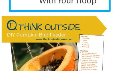 Easy! 6 Steps To Make a Pumpkin Bird Feeder With Your Troop